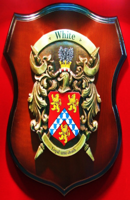 Coat of Arms/ Family Crest Shields